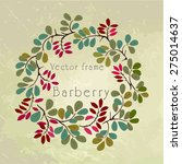 barberry ornate vector frame | Shutterstock .eps vector #275014637