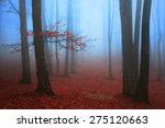 red tree in blue foggy woods | Shutterstock . vector #275120663