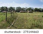 Country Landscape. Haystacks...