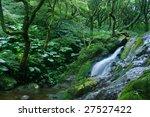 forest cascade | Shutterstock . vector #27527422