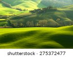 pastoral green field with long... | Shutterstock . vector #275372477