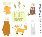 set of forest animals. cute... | Shutterstock .eps vector #275649467