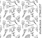 hand drawn doodle vintage... | Shutterstock .eps vector #275661257