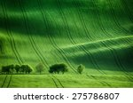 rolling sunny hills with fields ... | Shutterstock . vector #275786807