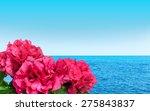 Summer Sea View Pink Flowers
