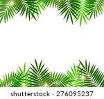 leaves of palm tree on white... | Shutterstock .eps vector #276095237