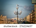 Small photo of Seagull (Larinae Rafinesque) standing on street lamp in Gallipoli (Le) in the Southern Italy