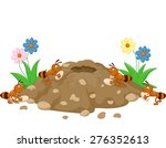 Anthill In The Forest Land