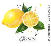 lemon watercolor | Shutterstock . vector #276414737