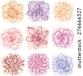 sketches of garden flowers | Shutterstock .eps vector #276666527
