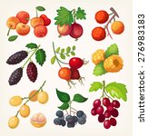 juicy colorful berry set for... | Shutterstock .eps vector #276983183