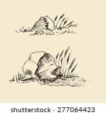 mountain scenery stones  rocks... | Shutterstock .eps vector #277064423