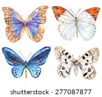 Set Of Butterflies Isolated On...
