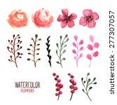 vector floral set. vector hand... | Shutterstock .eps vector #277307057