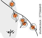 physalis winter cherry... | Shutterstock .eps vector #277366643