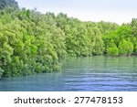 mangrove forests in thailand | Shutterstock . vector #277478153