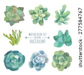 vector set of floral elements... | Shutterstock .eps vector #277584767
