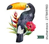 Vector Watercolor Toucan With...