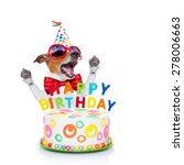 jack russell dog  as a surprise ... | Shutterstock . vector #278006663