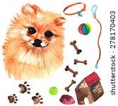 veterinary kit comprising... | Shutterstock .eps vector #278170403