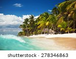 palm trees on the tropical ... | Shutterstock . vector #278346863