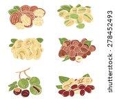vector set of walnuts ...   Shutterstock .eps vector #278452493