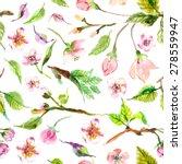 watercolor apple flowers... | Shutterstock .eps vector #278559947