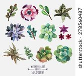 Vector Set Of Floral Elements...