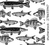 vector black and white sea fish ... | Shutterstock .eps vector #278655947