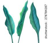 Tropical Palm Leaves. Stylish...