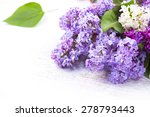 Lilac Flowers Bunch Over White...