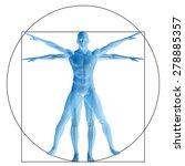 vitruvian human or man as a...   Shutterstock . vector #278885357