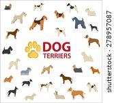 Dog Terriers Breeds Set