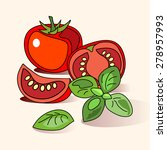 tomatoes and basil. hand drawn... | Shutterstock .eps vector #278957993