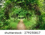 walkway lane path with green... | Shutterstock . vector #279250817