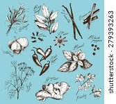 vector collection of ink hand... | Shutterstock .eps vector #279393263
