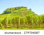 Vineyard And Old Ruin On Hill...