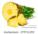pineapples. vector illustration. | Shutterstock .eps vector #279711293