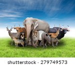 group of asia animals with... | Shutterstock . vector #279749573