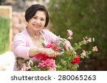 senior hispanic woman working... | Shutterstock . vector #280065263