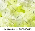 leaves texture background | Shutterstock . vector #280065443