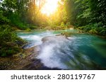 Tropical Rain Forest With Gree...