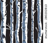 Birch Trees Background For You...