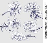 flower set  sketch of ... | Shutterstock .eps vector #280689437