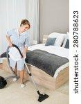 happy female housekeeper... | Shutterstock . vector #280788623