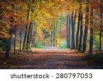 autumn forest. nachtegalenpark...   Shutterstock . vector #280797053