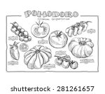 hand drawn tomato set  | Shutterstock . vector #281261657