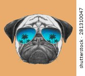 Hand Drawn Portrait Of Pug Dog...
