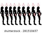 pregnant woman | Shutterstock . vector #281510657