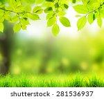 beautiful bakground from... | Shutterstock . vector #281536937